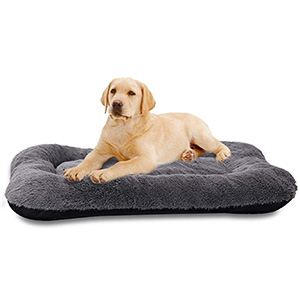 ANWA Medium Size Dog Bed