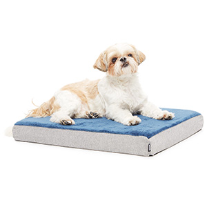 BarkBox Memory Foam Plush Dog Bed